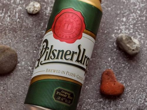 Пиво Pilsner Светлое 500 ml (Чехия)