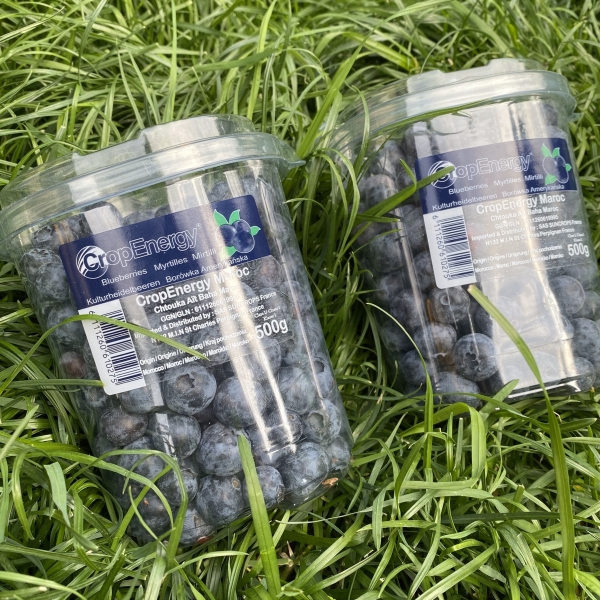 Голубика упаковка 250 гр