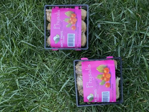 Физалис ягоды (упаковка 100 гр)