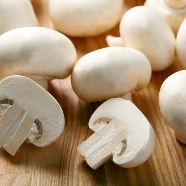 Шампиньоны грибы