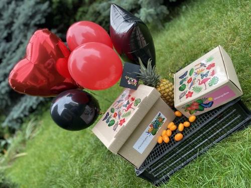Миди-букет из 5-ти воздушных шаров с гелием