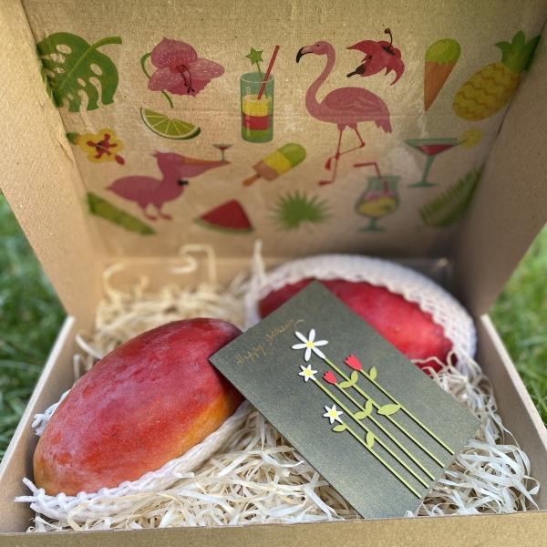 #Mangobox mini