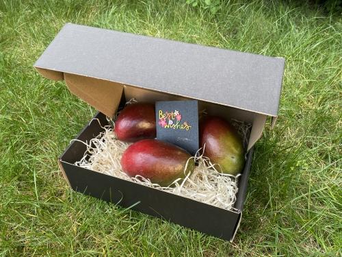 #Mangobox for men's