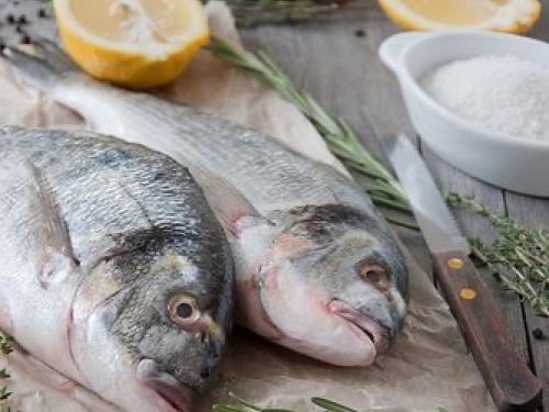 Дорадо охлажденная /рыба