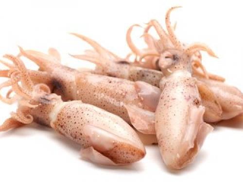 Кальмары маленькие охлажденные