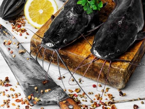 Сом Охлаждённый /рыба (большой)