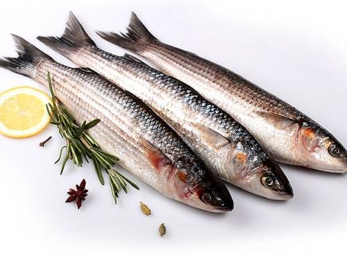 Кефаль охлажденная /рыба