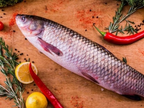 Белый Амур живой /рыба