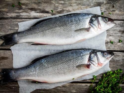 Сибас охлаждённый /рыба