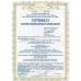 Грибы вешенки маринованные (500 гр банка стекло)