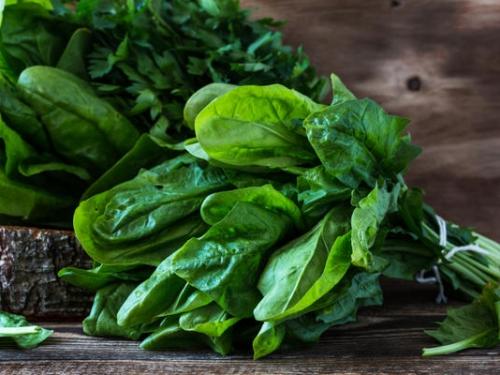 Букет свежей зелени «5 в 1» 250 гр (руккола, кинза, мята, шпинат, щавель по 50 гр)
