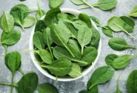 Салат беби шпинат в упаковке 125 грамм